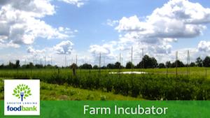 Farm Incubator