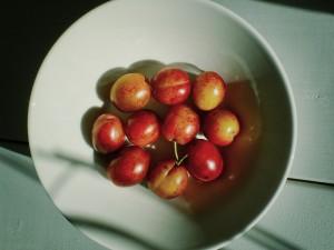 cherries-1268235_1920
