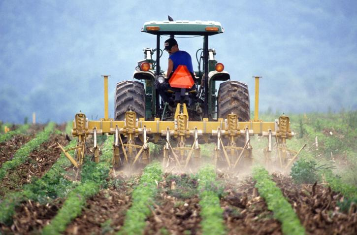 What are the Potential Cuts in the 2018 Farm Bill?